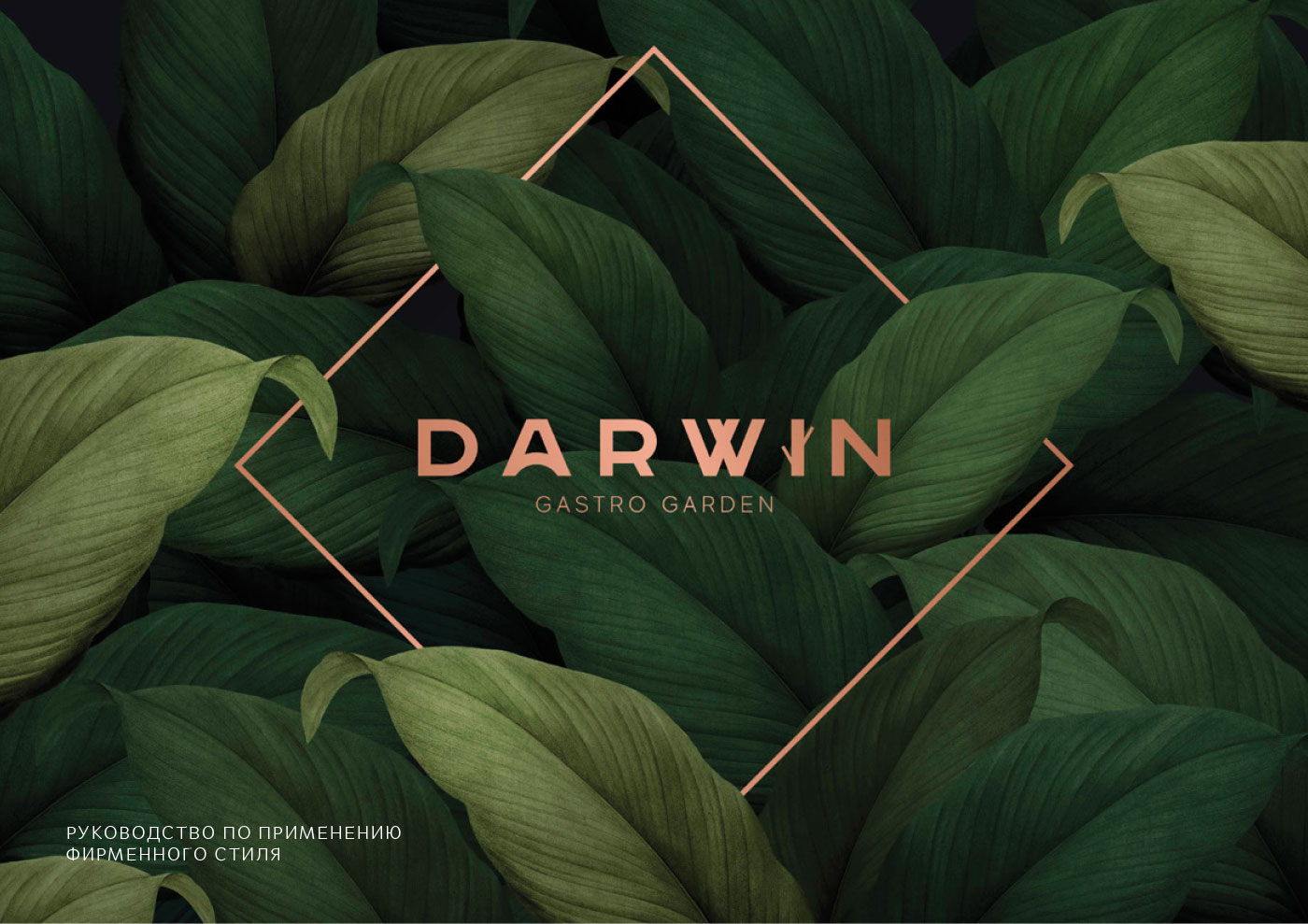Фирменный стиль ресторана Darwin